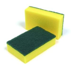 spongescourer